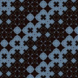 Ecological Symmetries - Charaxes_ anticlea, DMPR-2X2(1)