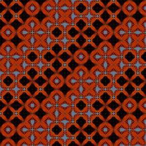 Ecological Symmetries - Charaxes_anticlea , DMPR-2X2, 42x42