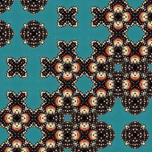 Ecological Symmetries - Chlosynejanais, DMPR-1X1, 42 x 42